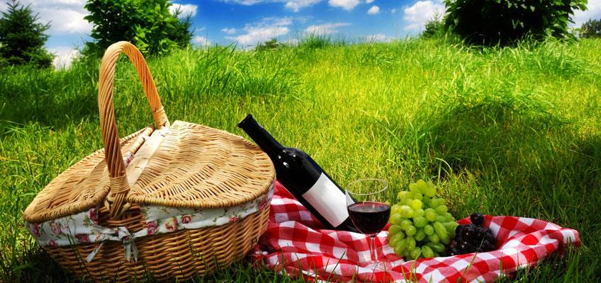piknik.jpg (147.99 Kb)